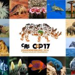 All things CITES CoP17 & Wildlife Protection